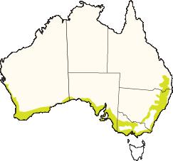 Temp-Coastal